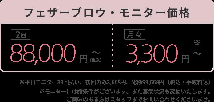 フェザーブロウ・モニター価格2回88,000円~(税込)月々3,300円~※平日モニター33回払い、初回のみ3,668円、総額99,668円(税込・手数料込)※モニターには諸条件がございます。また募集状況も変動いたします。ご興味のある方はスタッフまでお問い合わせくださいませ。